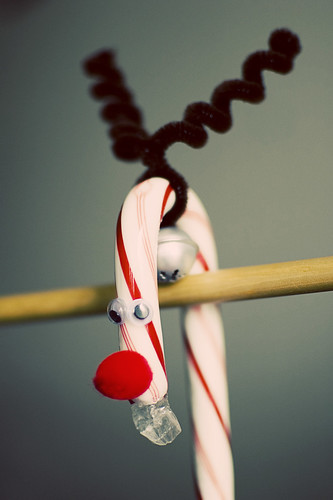 rudolph candy cane [4]