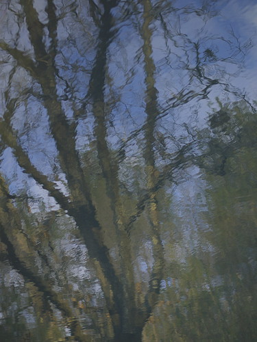 reflection after Monet #1
