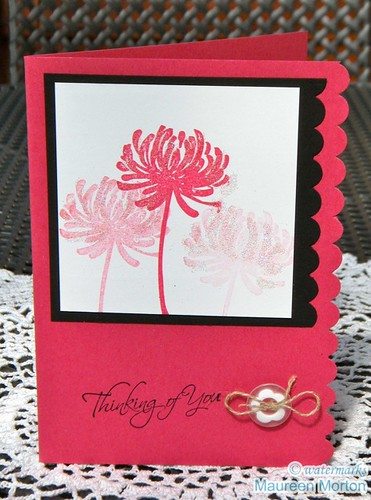 Stampin' Off with Stampin' Up by mkmermaid (Maureen)