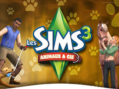 Sims Camp Day 1 Blog Snw Simsnetwork Com