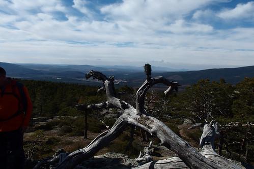 Senderismo Quintanar De La Sierra Y Regumiel Burgos - Fotografía María Luisa Marciel (13)