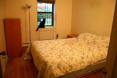$950 furnished room in heart of Fort Greene July-September