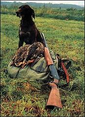Bilo My Dog (fahadali4wd) Tags: pakistan out doors hunting offroading hunters wildbore urial