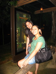 After the Night Safari show (seasonal wanderer) Tags: ana joyce nightsafari singaporenightsafari
