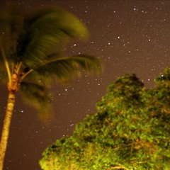 A starry sky above Kahekili Beach on a clear night.