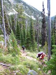 Long Canyon Trail, Selkirk Mountains, North Idaho.