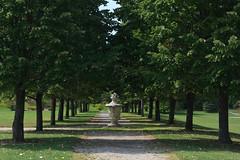 Shady Path (daverodriguez) Tags: trees tree urn path symmetry toledobotanicalgarden