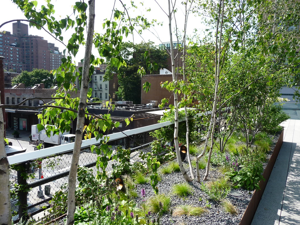 Photo of plantings along the High Line