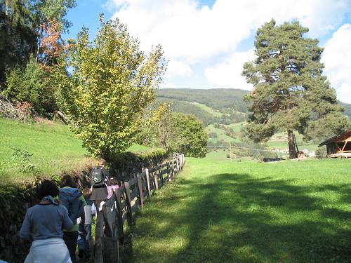 Der Kastanienweg ist umgeben von saftigen Wiesen und herbstfarblichen Wäldern