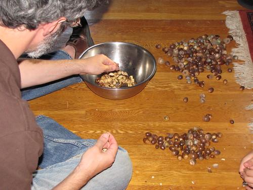 shelling acorns
