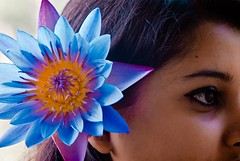 Water lily... (Shad0w_0f_Dark) Tags: blue flower eye art beauty lady sylhet bangladesh srimongol ttlsafary wayerlily