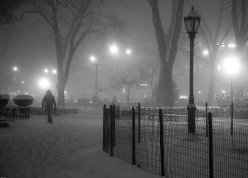 Madison Square Park #3