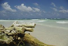 Tulum's Beach