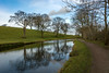 DSC- 0088 - Around the bend.... (SWJuk) Tags: swjuk uk unitedkingdom gb britain england lancashire burnley home foulridge canal leedsliverpoolcanal towpath fields farmland trees sheep water calm still reflections bluesky clouds footpath vanishingpoint leadin 2017 feb2017 winter outdoor landscape waterscape nikon d7100 nikond7100 18300mm rawnef lightroom