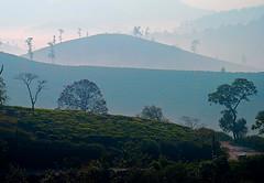Western Ghats 3 (GOPAN G. NAIR [ GOPS Photography ]) Tags: india landscape photography photo kerala idukki gopan westernghat gopsorg gopangnair