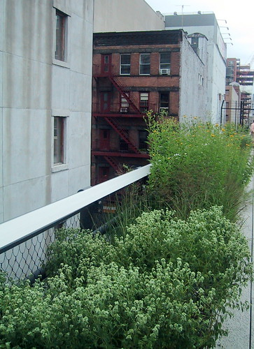 High Line Park by you.