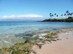 Relax (seddeg ~) Tags: ocean water hawaii maui coastal molokai kapaluabay the4elements p12502612