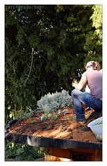 Green Roof 09 (carolprado) Tags: sopaulo workshop greenroof cotia