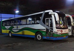 Dominion 8079 (Api II =)) Tags: bus lines del monte dominion 8079 dmmc dm09