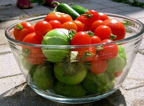 Tomatos, Tomatillos, Jalapenos, oh my!