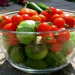 Tomatos, Tomatillos, Jalapenos, oh my! thumbnail
