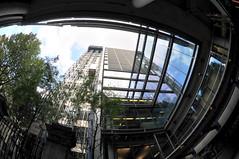 DSC_3229 (william saywell) Tags: london fisheye cityoflondon 105mmnikon