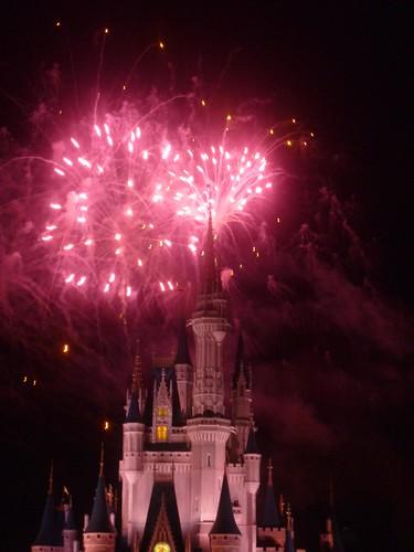magic kingdom castle at night. magic kingdom castle