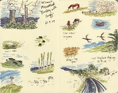 Page 37 (tanaudel) Tags: road trees sky horses art moleskine birds illustration sketch cattle cows sheep drawing sydney ducks sketchbook brisbane illustrationfriday page marker ifri muswellbrook newenglandhighway