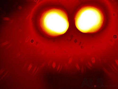 外星人036(X4)P8290044.jpg