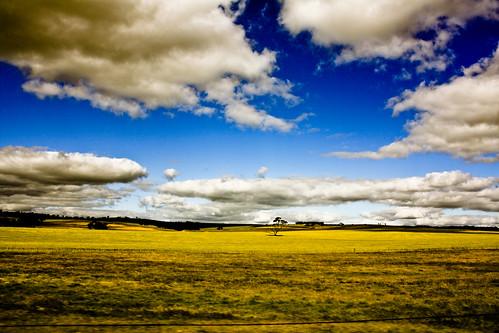 Aussie landscape