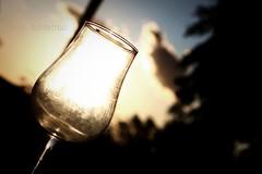 a toast (ivan amezcua) Tags: blue sky cloud sun white tree glass leaves rain silhouette leaf branch pole wineglass ivanamezcua