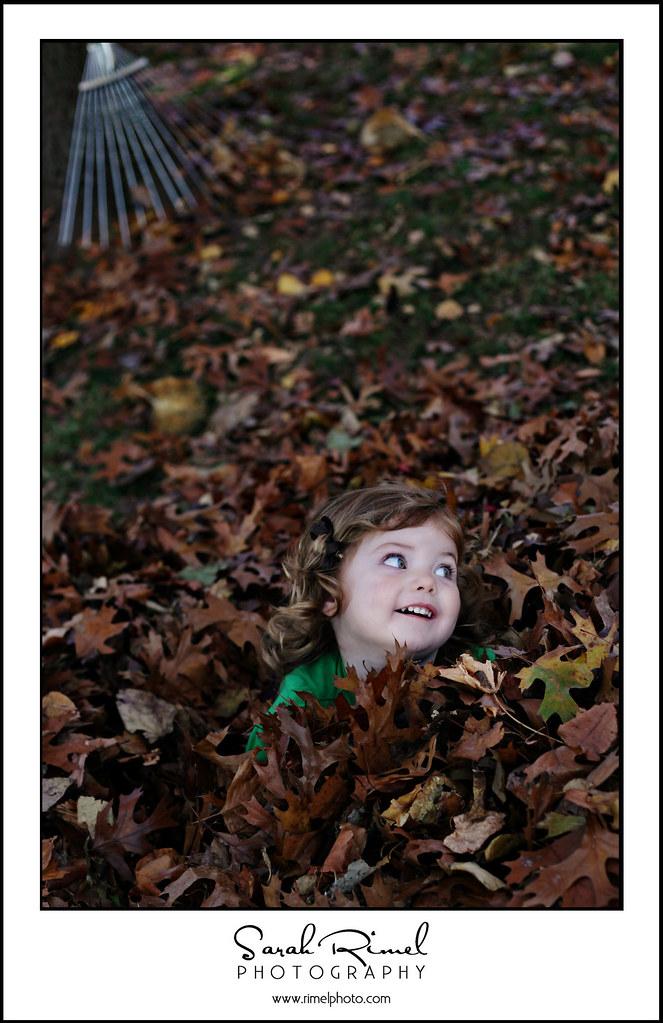 leaf fun 23