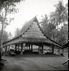 Thatched structure in village on Ibo River, Halmahera