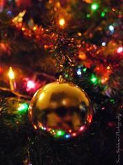 I <3 Christmas (Sara Zambo) Tags: christma