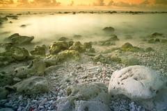 mystical shore - color