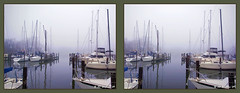 OPHM (Oak Pt Harbor Marina) (starg82343) Tags: mist misty fog marina boats outside outdoors harbor pier stereoscopic stereogram 3d crosseye dock md brian foggy maryland overcast stereo rainy wallace mast pasadena piling sidebyside drizzly drizzle rockcreek stereoscopy stereographic freeview crossview oakpoint drizzling brianwallace xview whitescove xeye oakpointharbor oakptharbor oakpt