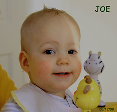 Joe & Friends (Robert 500D) Tags: baby smile smiling canon joseph toys kid child joe zebra babyphoto 500d youngone canon500d babywithtoys eosrebelt1i500dkissx3