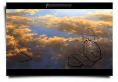 Masih Belum Terlambat... (AnNamir c[_]) Tags: sunset reflection silhouette canon eos kitlens malaysia siluet dq goldenhour ranting 500d maghrib kualakubu wondersofnature tenang kkb huluselangor spiritphoto annamir darulquran tasikhuffaz dqkkb huffazlake