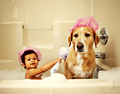 wash my back, I'll wash yours. (Kelly West Mars) Tags: pink portrait dog baby silly cute girl groom bath toddler funny child naturallight bubbles clean wash tub spa soapy bestfriends bathingbeauties showercaps florabellaactions nikond80labradorretriever