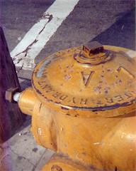 City Thrist (iamsatan) Tags: street film analog fuji superia 110 firehydrant 200 hollywood 4x5 expired outdated fujicolor c41 fujicolorsuperia200 ansco50