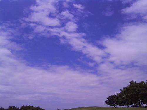Photo 0981