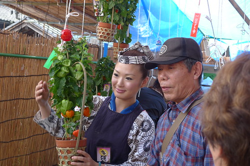 Pretty ground cherry pod vendor posing with customer during hozuki ichii at senso-ji temple