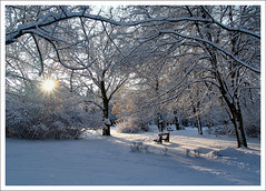Winter's fable / Téli mese (FuNS0f7) Tags: winter hungary sonycybershotdscf828 gödöllő