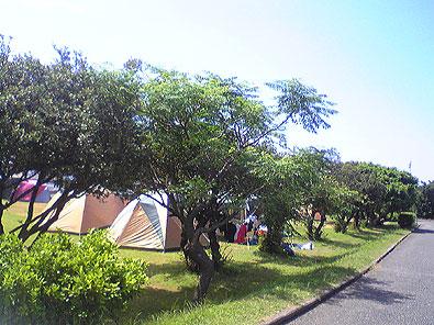 鹿児島県 屋久島青少年旅行村 の写真g6288