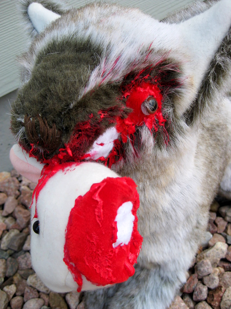 Wolf eating rabbit - photo#33