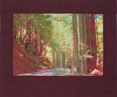 Into the Redwoods (jeanneaird) Tags: embroidery artquilt digitalprintingonfabric