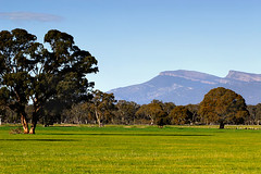 The Grampians, Victoria, Australia IMG_6526_The_Grampians (Darren Stones Visual Communications) Tags: darren rural stones farm australia scene grampians victoria vic paddock dgstones