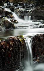 The Beidog (Izzy Standbridge) Tags: longexposure water wales rocks stream panasonic g1 ceredigion slowexposure bej beidog