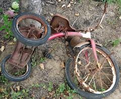 Left For Dead (Julia TortoiseHugger) Tags: old red abandoned bike oregon rust child or tricycle rusty faded flattire banks jimdandyfarm
