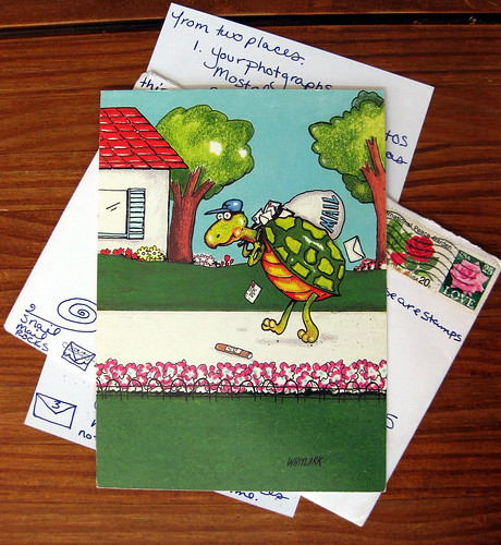 Turtle mail
